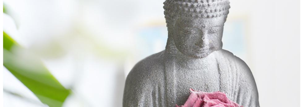 Praxis für Chinesische Medizin und ganzheitliche Gesundheit